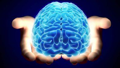 تصویر از حقایق شگفت انگیز مغز انسان