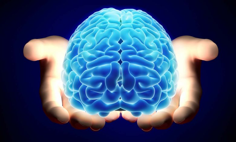 حقایق شگفت انگیز مغز انسان   شگفتیهای مغز انسان