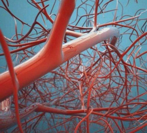 سرعت انتقال پیام های عصبی در بدن