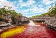 تصویر از رودخانه پنج رنگ در کلمبیا