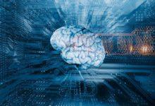 تصویر از دانشمندان ژاپنی از هوش مصنوعی برای خواندن مغز استفاده کردند