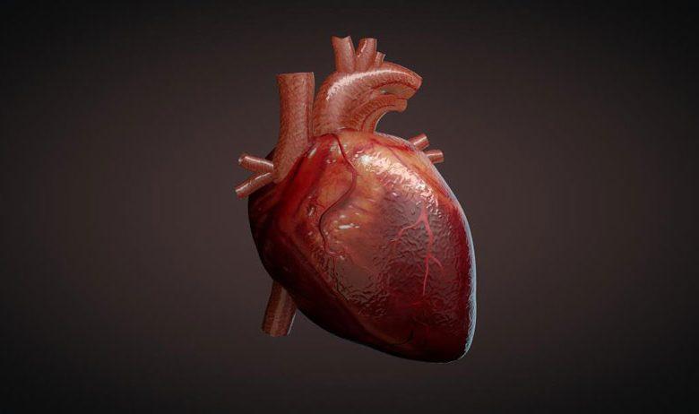 شگفتی های قلب انسان