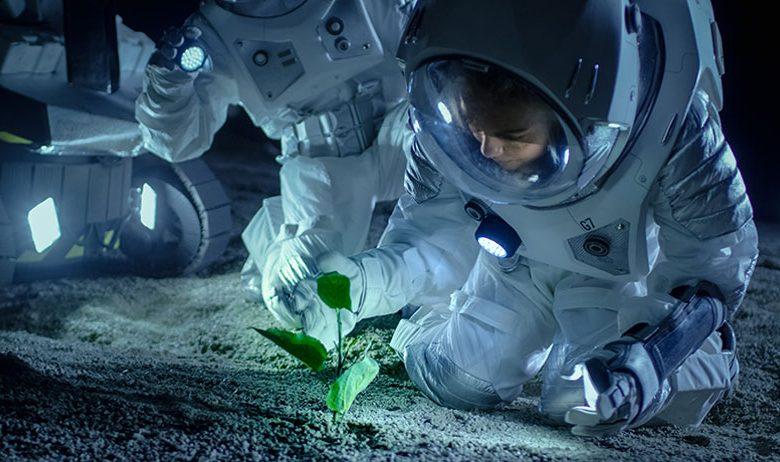 گیاه در فضا