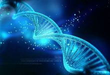 تصویر از ذخیره سازی اطلاعات در DNA : یک گرم DNA می تواند یک zettabyte در خود نگه دارد