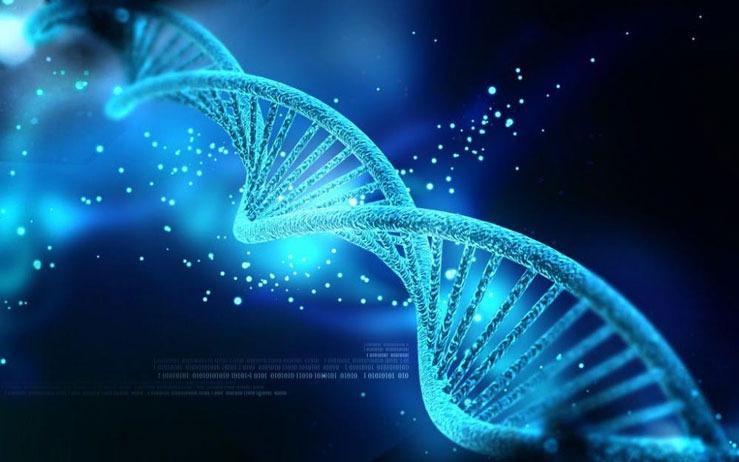 ذخیره سازی اطلاعات در DNA