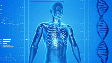 تصویر از 24 واقعیت شگفت انگیز درباره بدن انسان