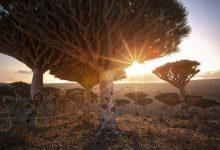 تصویر از 20 مکان کاملاً عجیب در سراسر جهان