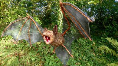 تصویر از خفاش خون آشام غول پیکر 100000 ساله در غار آرژانتین پیدا شد